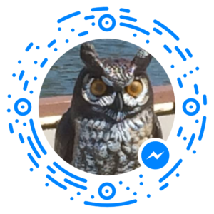 messenger_code_1753216425003551
